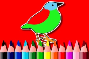 Jeu Birds coloring book