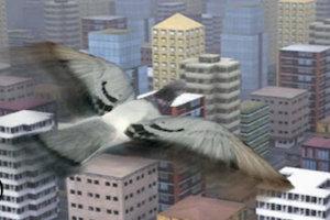Jeu Fly like a bird 3