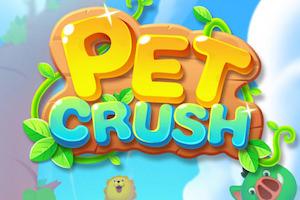Jeu Pet crush